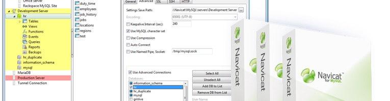 Navicat MySQL Editor